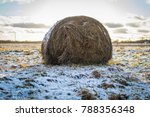 Small photo of one haybale in the winter
