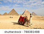 a camel lies on the desert sand ... | Shutterstock . vector #788381488