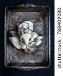 oyster mushroom bouquet on a...   Shutterstock . vector #788409280