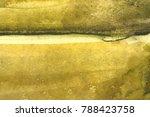 yellow orange brush strokes on... | Shutterstock . vector #788423758