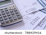 close up of payroll summary... | Shutterstock . vector #788429416