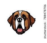 St. Bernard Dog   Isolated...