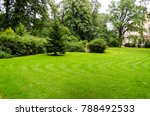 green decorative garden.... | Shutterstock . vector #788492533