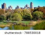 central park  new york | Shutterstock . vector #788530018
