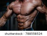 blonde brutal sexy strong... | Shutterstock . vector #788558524