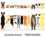 standing dogs and cats front... | Shutterstock .eps vector #788560684