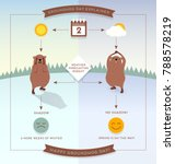 happy groundhog day infographic ... | Shutterstock .eps vector #788578219
