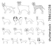 dog breeds outline icons in set ... | Shutterstock .eps vector #788611258