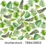 mix leaf of palm tree background | Shutterstock . vector #788618803