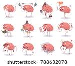 vector set of twelve cartoon... | Shutterstock .eps vector #788632078
