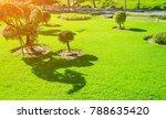 sunlight shines on the green... | Shutterstock . vector #788635420