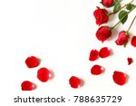 Stock photo red roses and rose petals isolated on white background 788635729