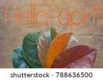 Small photo of Flat lay of Hello april on orange text over gradient leaves different stage autumn senescence foliage background