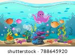 marine habitats and the beauty... | Shutterstock .eps vector #788645920