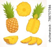 pineapple vector. a detailed... | Shutterstock .eps vector #788757586