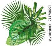 composition vector lizard... | Shutterstock .eps vector #788768074
