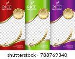 rice food or thai food  banner... | Shutterstock .eps vector #788769340