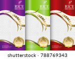 rice food or thai food  banner... | Shutterstock .eps vector #788769343