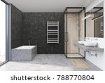 gray bathroom interior with a... | Shutterstock . vector #788770804
