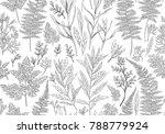 botanical hand drawn... | Shutterstock .eps vector #788779924