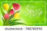 beautiful spring bouquet of red ... | Shutterstock .eps vector #788780950