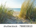 sand beach at the ocean | Shutterstock . vector #788833810