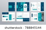 design vector template layout... | Shutterstock .eps vector #788845144