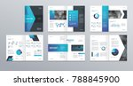 design vector template layout... | Shutterstock .eps vector #788845900