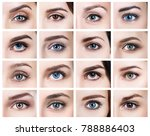 collage of many female eyes... | Shutterstock . vector #788886403