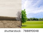 ecology concept change tree... | Shutterstock . vector #788890048