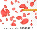 Stock vector petals flower of roses flying pink petals isolated on transparent background 788893216