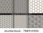 collection of seamless... | Shutterstock .eps vector #788914504