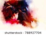 loving horse and a girl  girl... | Shutterstock . vector #788927704