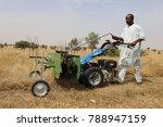 Farmers Cutting Grass In A...