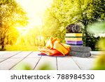 spring cleaning background and... | Shutterstock . vector #788984530
