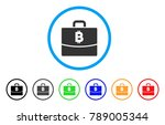 bitcoin accounting case rounded ...   Shutterstock .eps vector #789005344