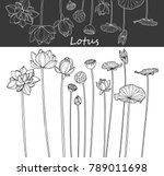 collection lotus flower with... | Shutterstock .eps vector #789011698
