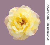 polygonal yellow rose  isolated ... | Shutterstock .eps vector #789043900