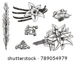 ink hand drawn style set of...   Shutterstock . vector #789054979