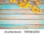 yellow flowers on vintage... | Shutterstock . vector #789081850