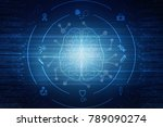 human brain 2d illustration  | Shutterstock . vector #789090274