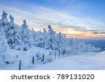 walk trail of the frozen forest ... | Shutterstock . vector #789131020
