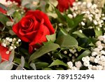 Stock photo beautiful red roses a combination of beauty and subtle naturalness 789152494