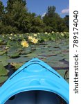 Small photo of Solon, IA/ August 2017, blue kayak drifts into green lilly pads with large yellow flowers.