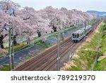 train on the railroad track...   Shutterstock . vector #789219370