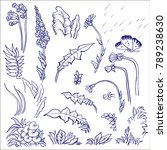 vector set of ink drawing wild... | Shutterstock .eps vector #789238630