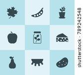 set of 9 organic filled icons...