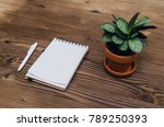 office desk table top view.... | Shutterstock . vector #789250393