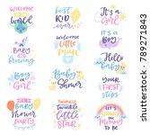baby shower sign vector boy or... | Shutterstock .eps vector #789271843
