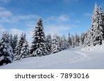 winter landscape   Shutterstock . vector #7893016